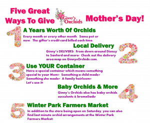 Lots of LUVly ways to give Ginny's Orchids for Mother's Day!